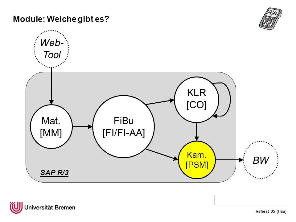 Web-Tool KLR [CO] FiBu [FI/FI-AA] Mat. [MM] BW Module: Welche gibt es